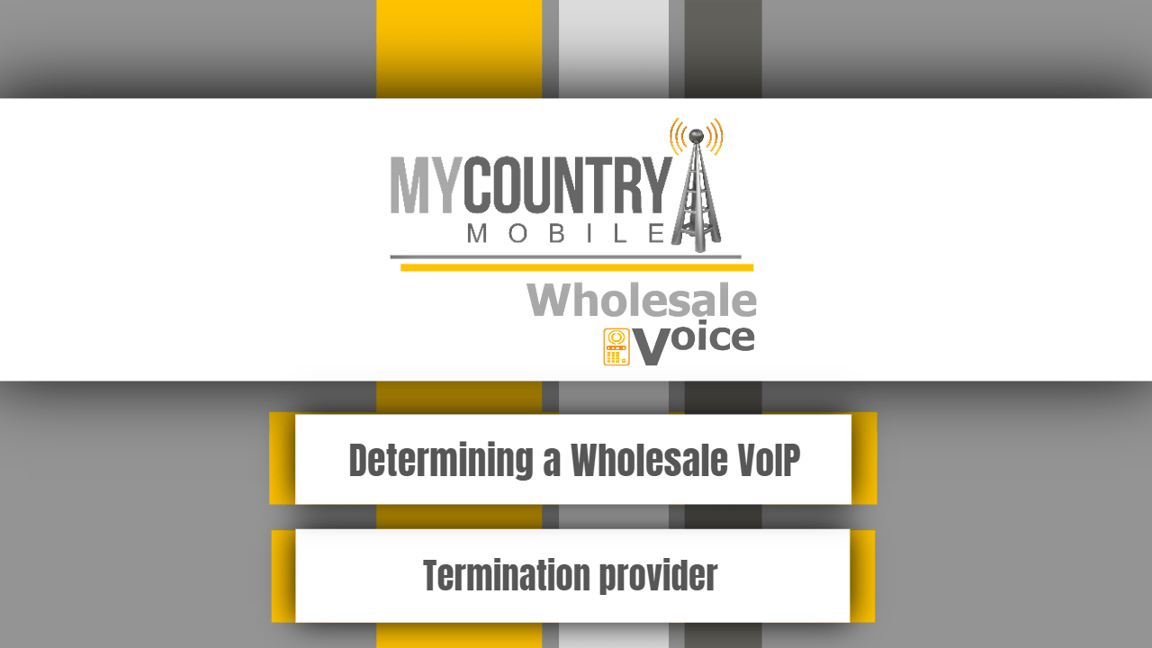 Determining a Wholesale VoIP Termination provider