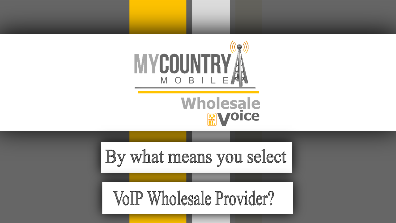By what means you select VoIP Wholesale Provider? - My Country Mobile