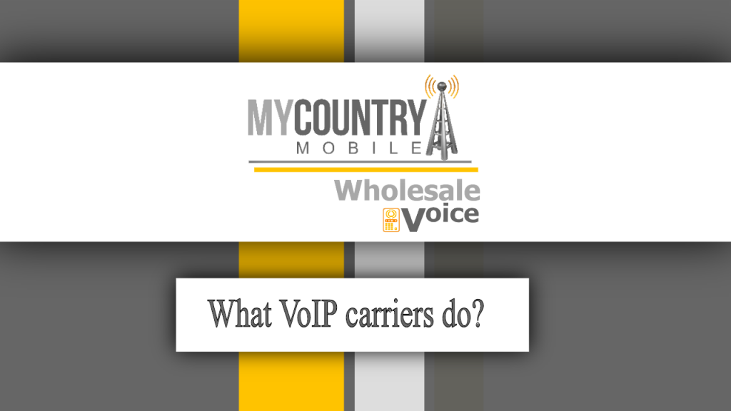 What VoIP carriers do? - My Country Mobile